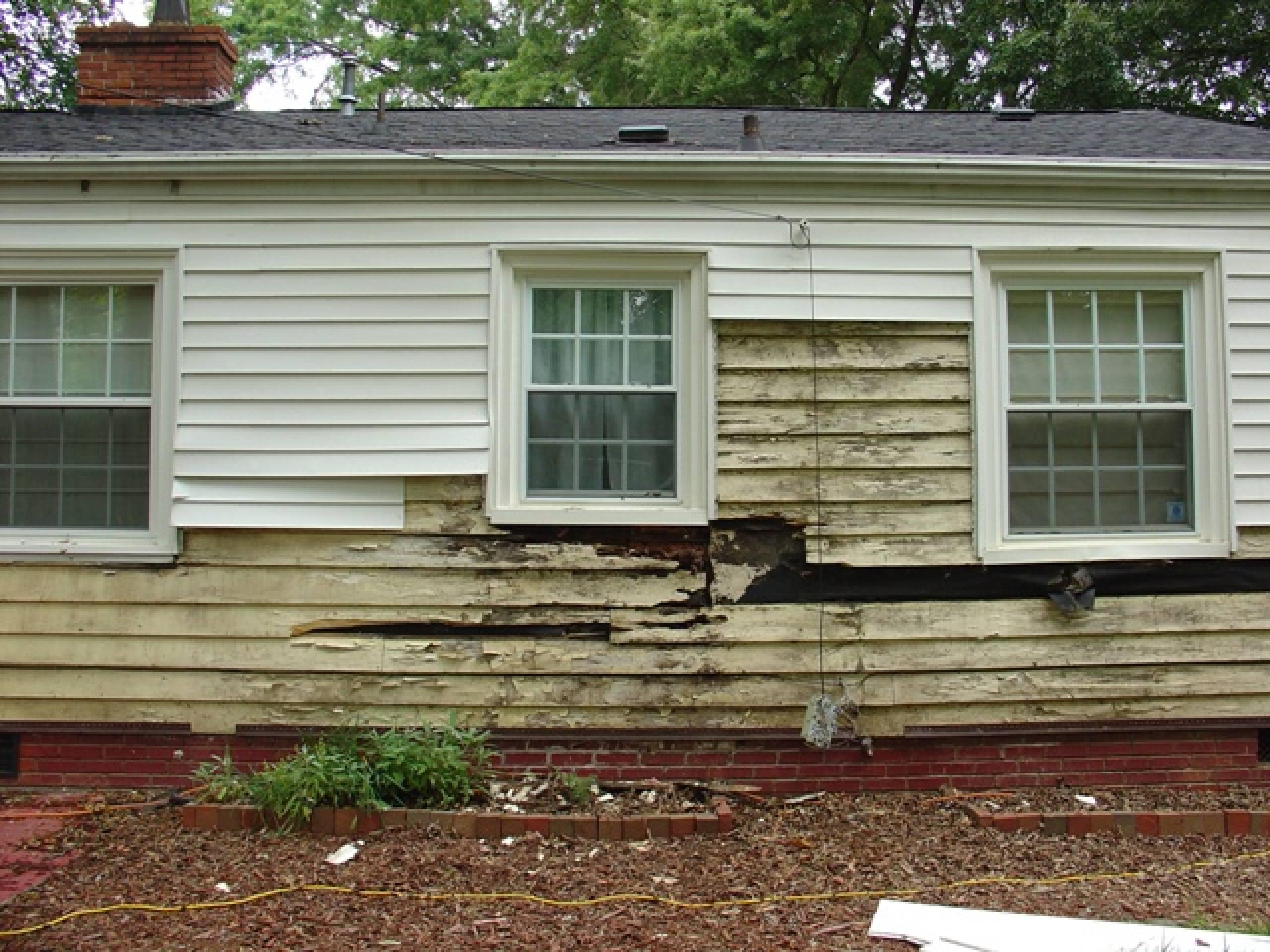 Get Rid Of Subterranean Termites