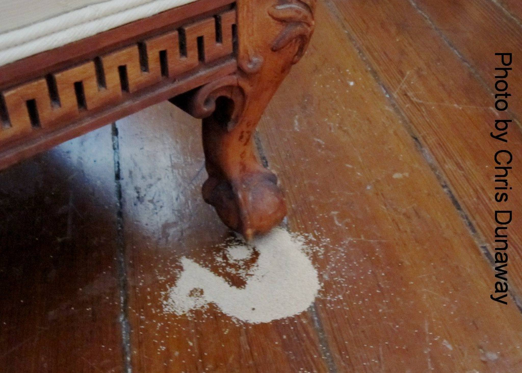 Get Rid Of Termites In Furniture