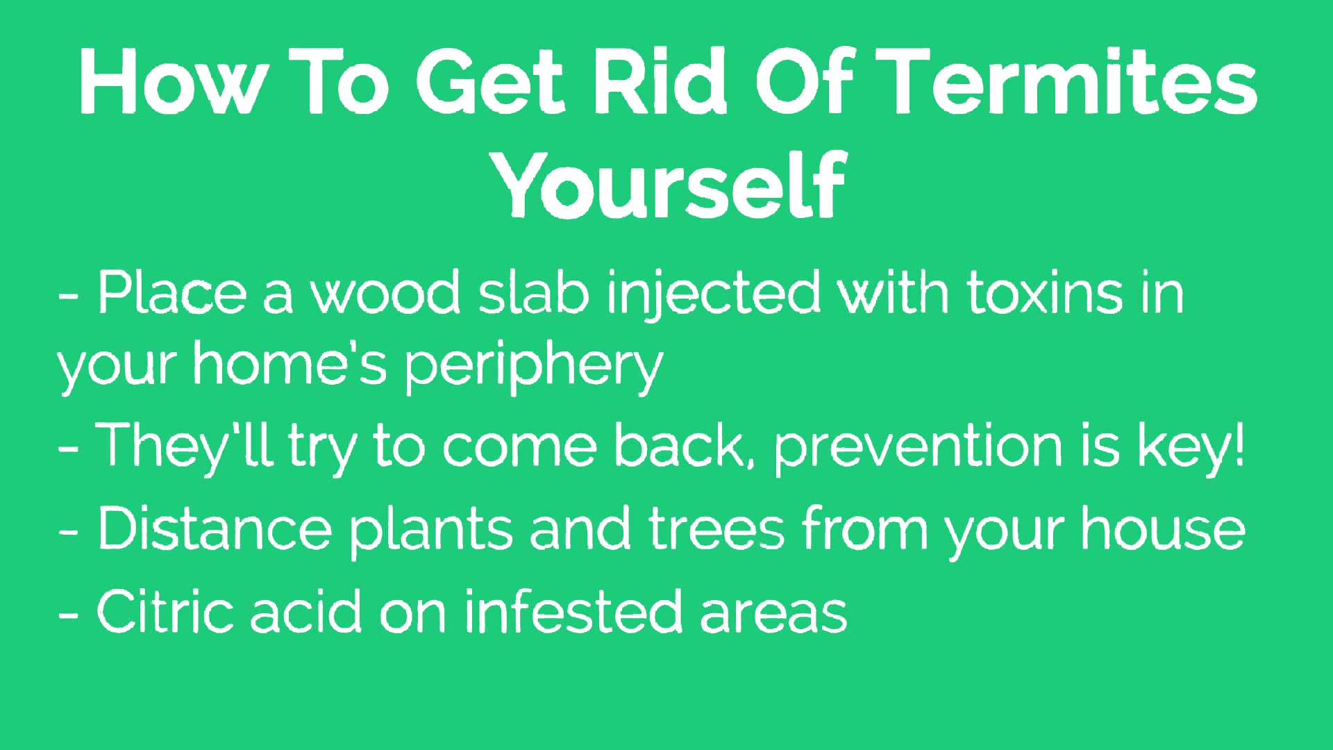 How To Get Rid Of Termites Natural Way