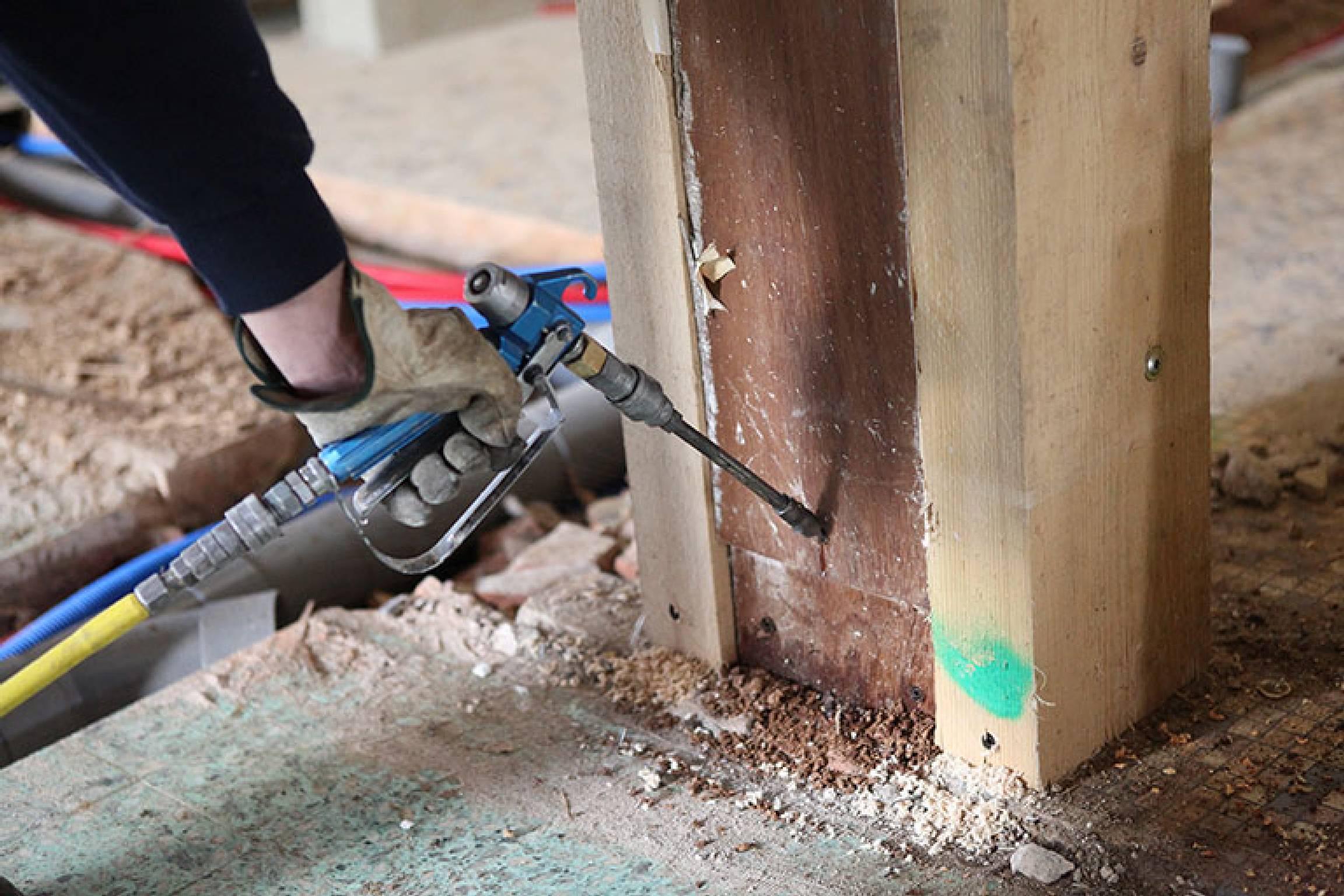 Subterranean Termite Treatment Options