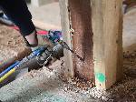 Subterranean Termite Treatment Options