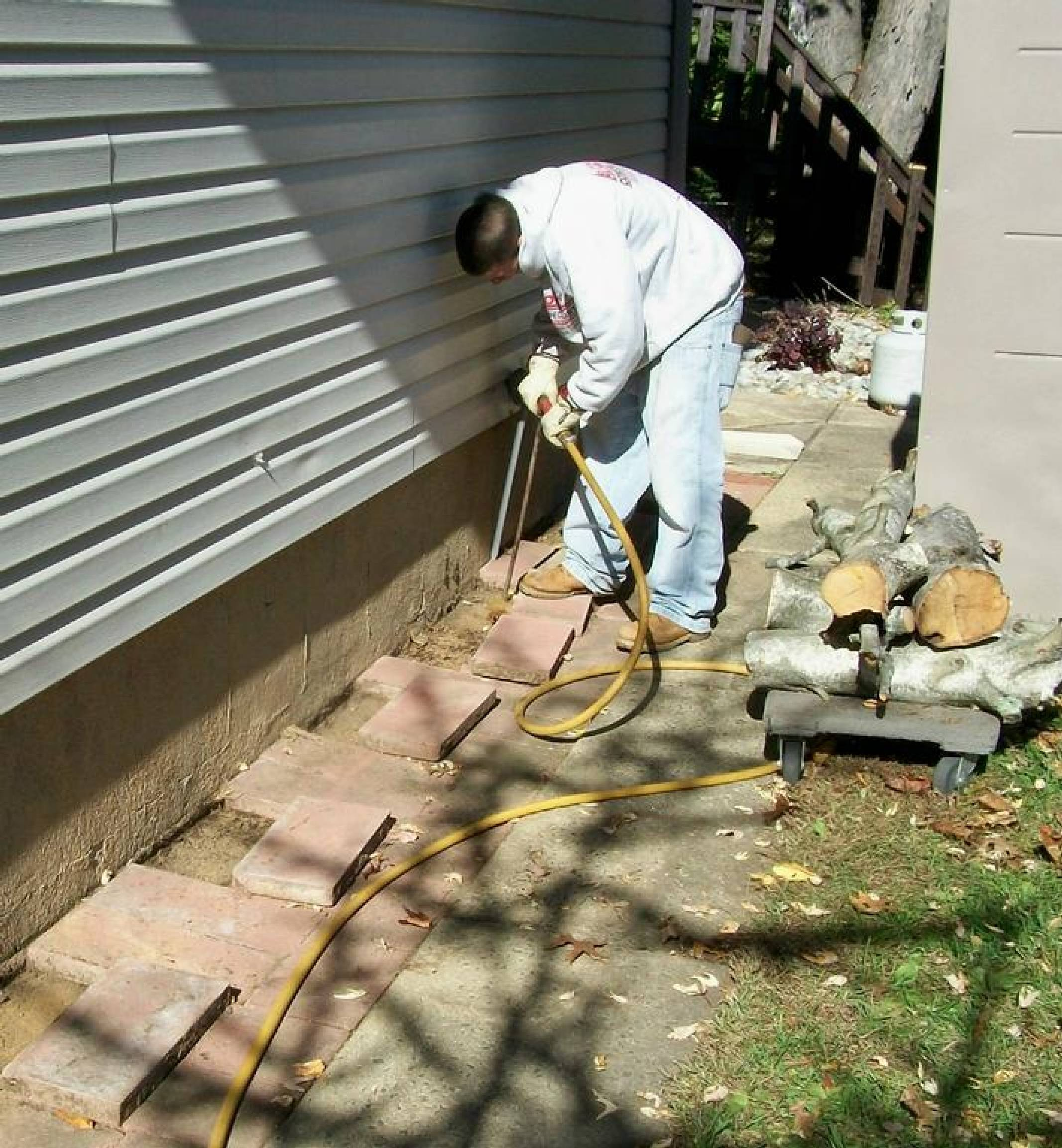 Subterranean Termites Treatment Options