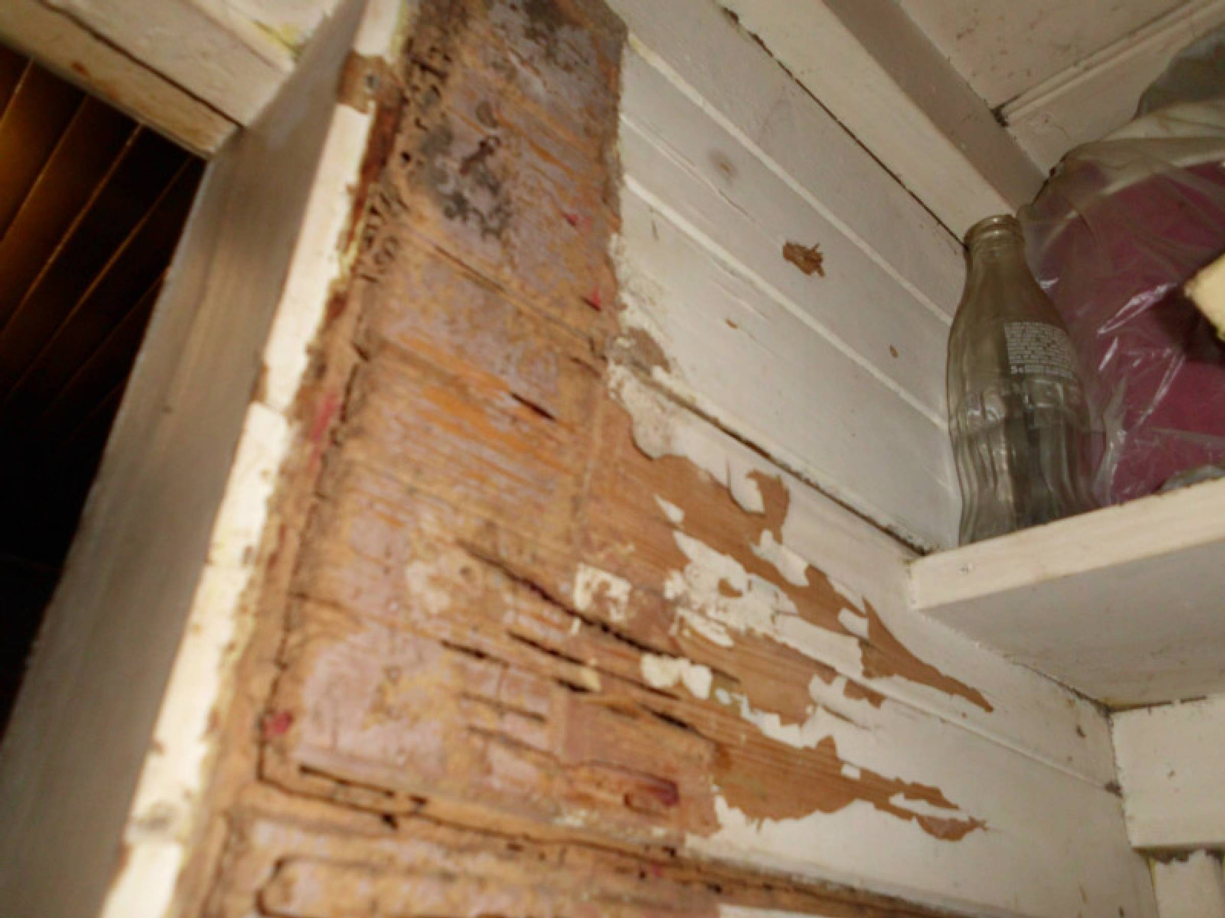 termite damage door frame