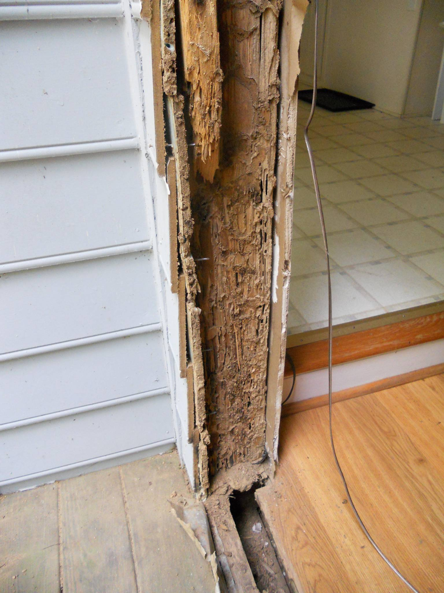 termite damage house