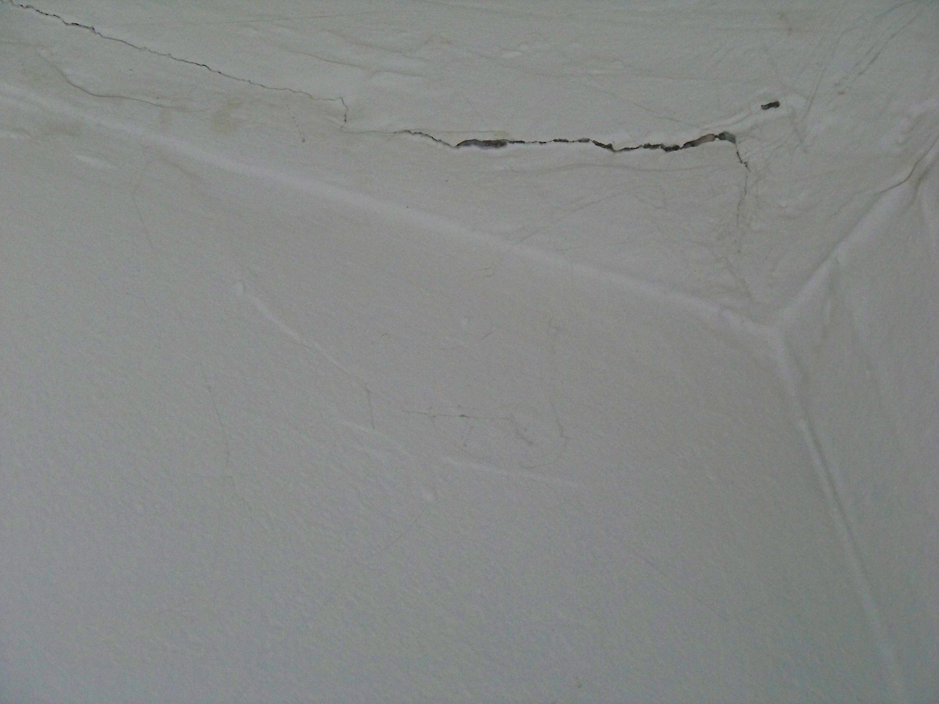 termite damage pictures on drywall