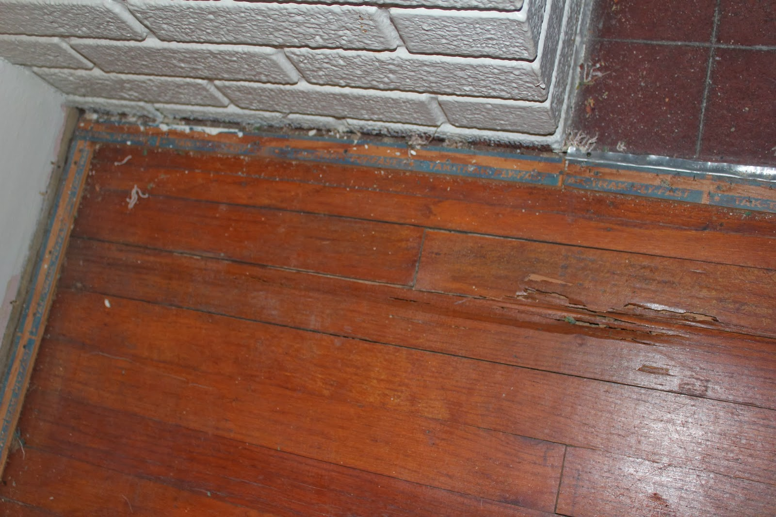 Termite Damage On Wood Floors Pictures