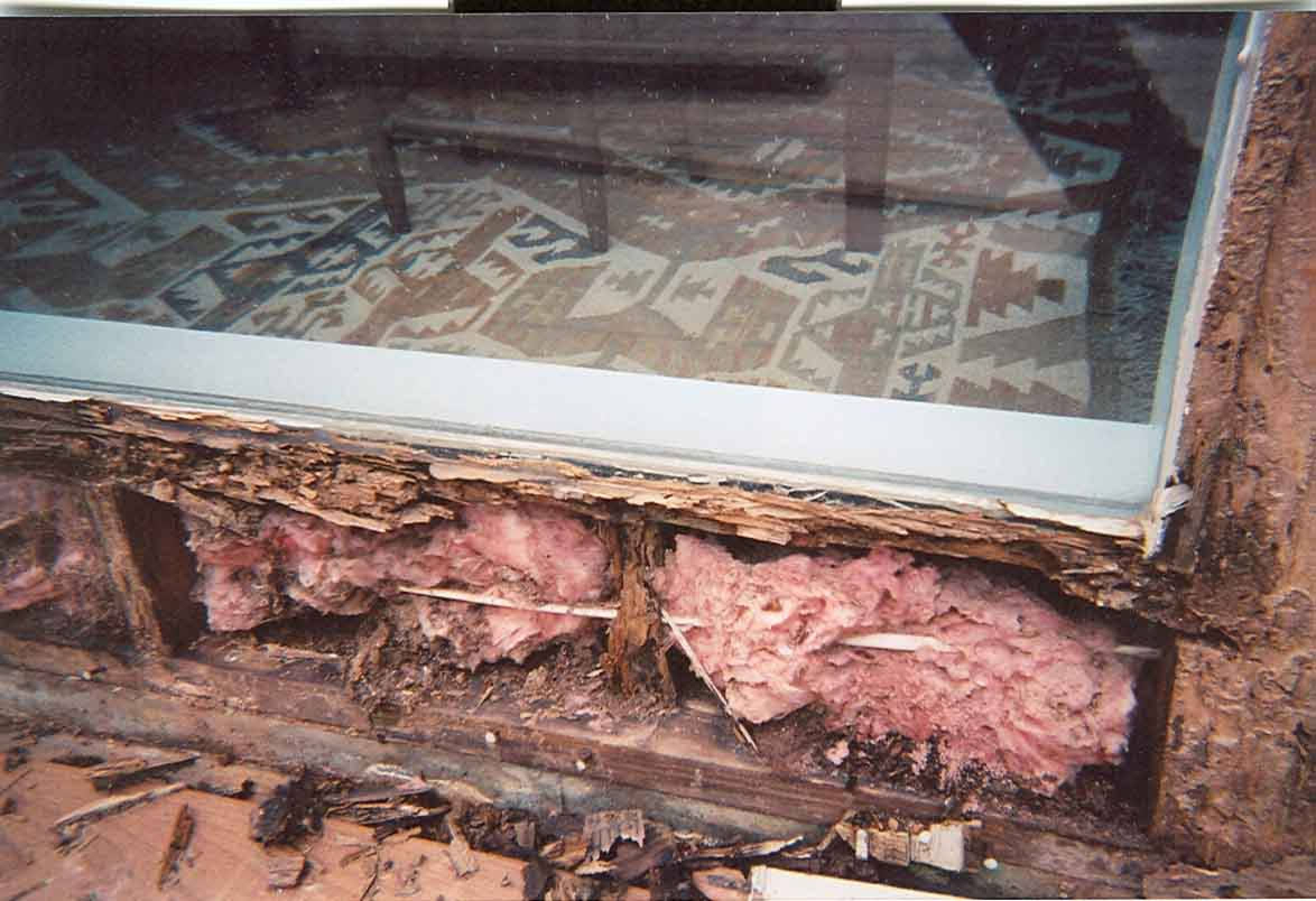 termite damage window sill